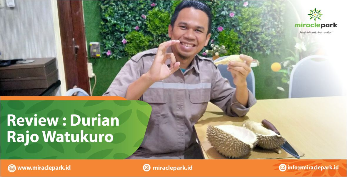 REVIEW DURIAN RAJO WATUKURO